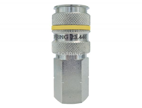 Coupler quiksilver (aro 210) 1/4 (f) npt (automatic) 100/cse